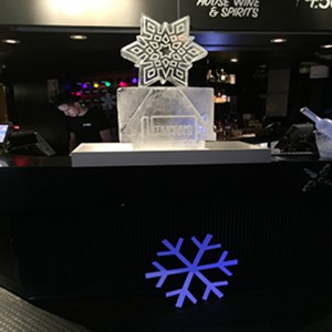 Logo-with-Snowflake-and-double-luge-set-up-large